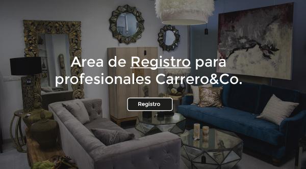 Bienvenidos al área de registro para profesionales de Carrero&co.